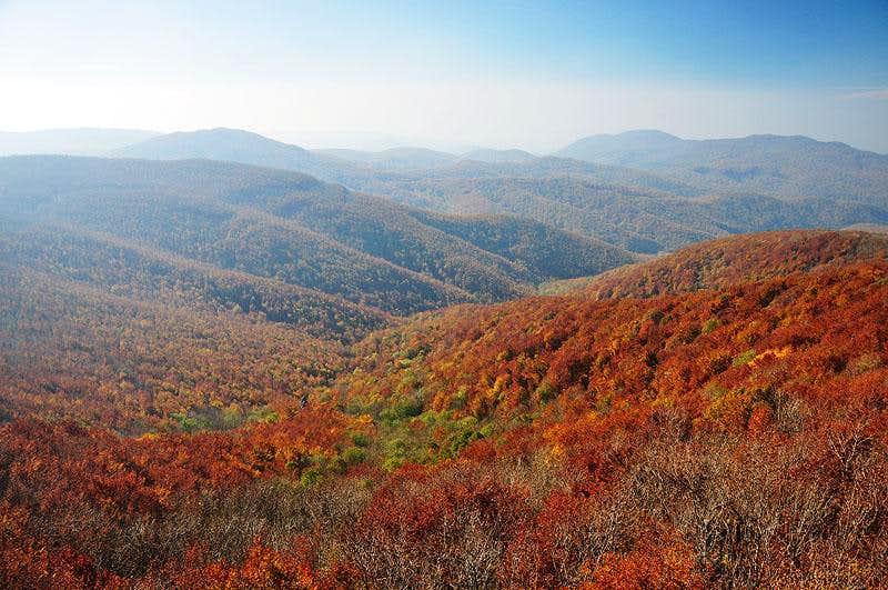Colorful autumn in Börzsöny