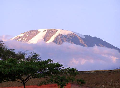 Kili Seen From Moshi