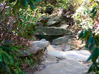 Mt. Hawksbill trail NC