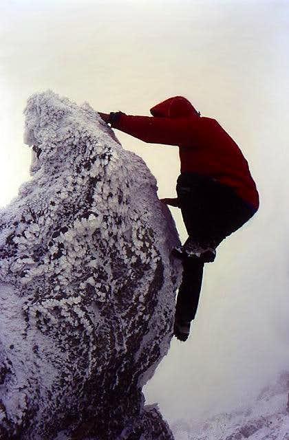 Climbing the highest...