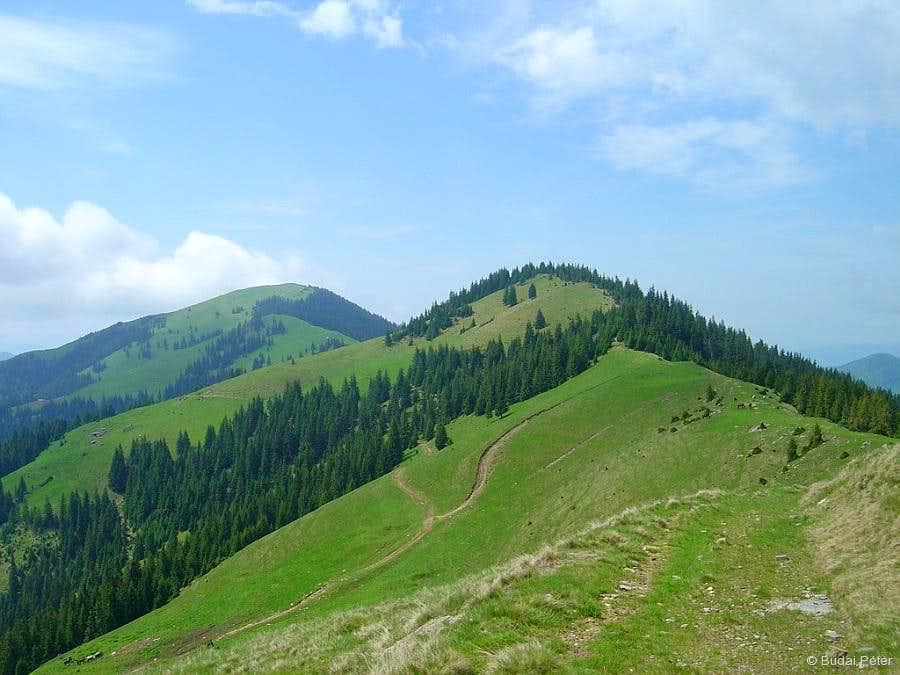 On the Curăţel ridge