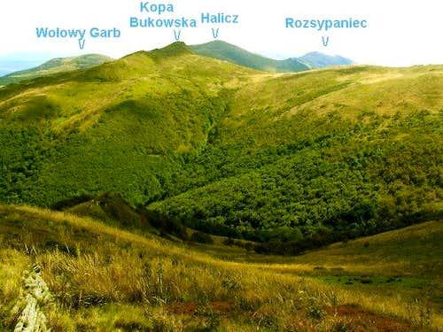 View from summit of Bukowe Berdo
