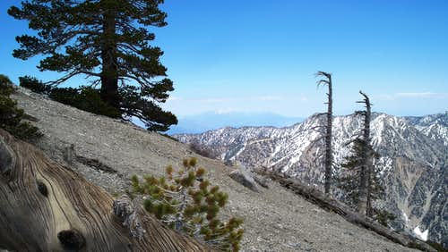 San Gorgonio from Mt Baldy