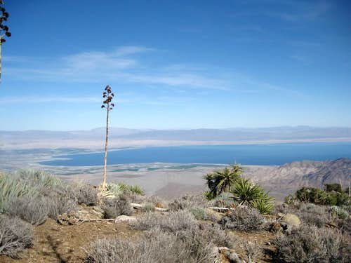 The Salton Sea from near Mile-High\'s summit