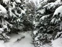 snow ;)