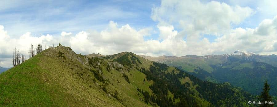Rodna Mountains skyline