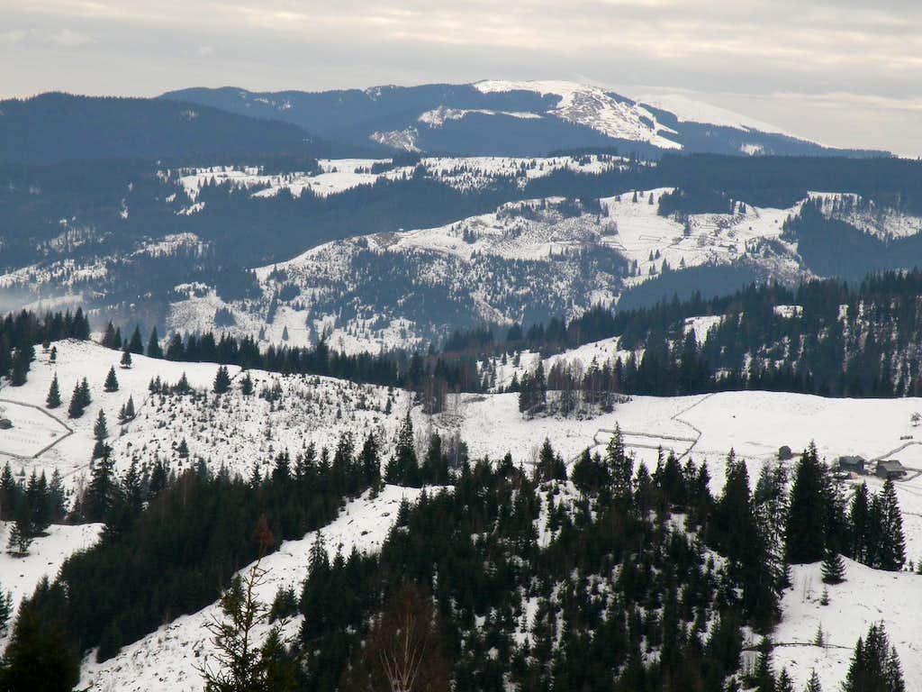 Carpathian Mountains of Bucovina