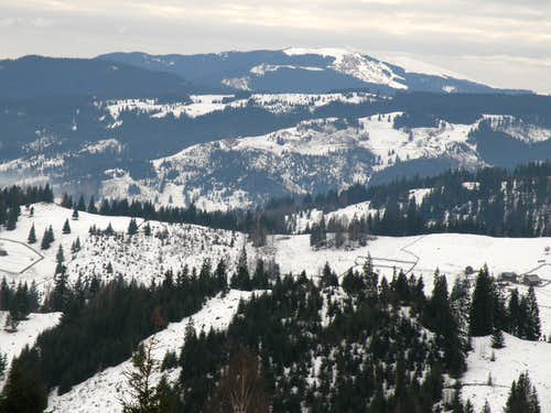 Carpathian Mountains of Bucovina