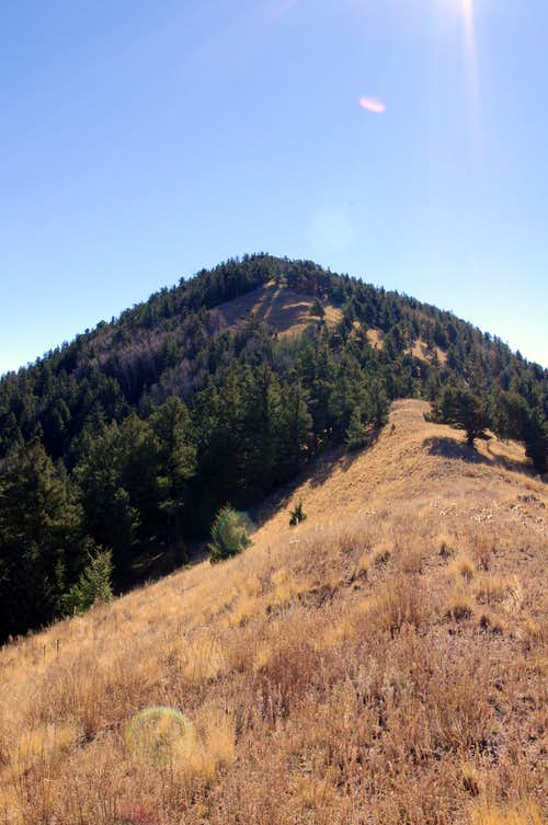 Timber Peak Ridge