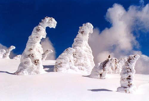 Big White Mountain Summit