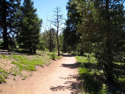 Pikes Peak via the Barr Trail