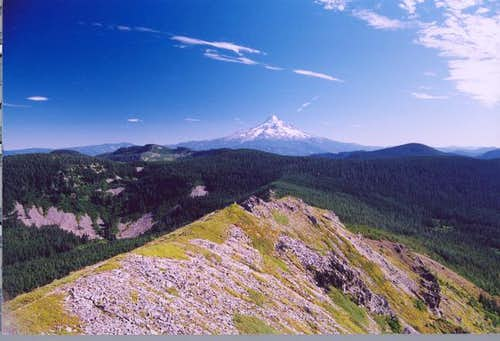 View of Mt. Hood from the...