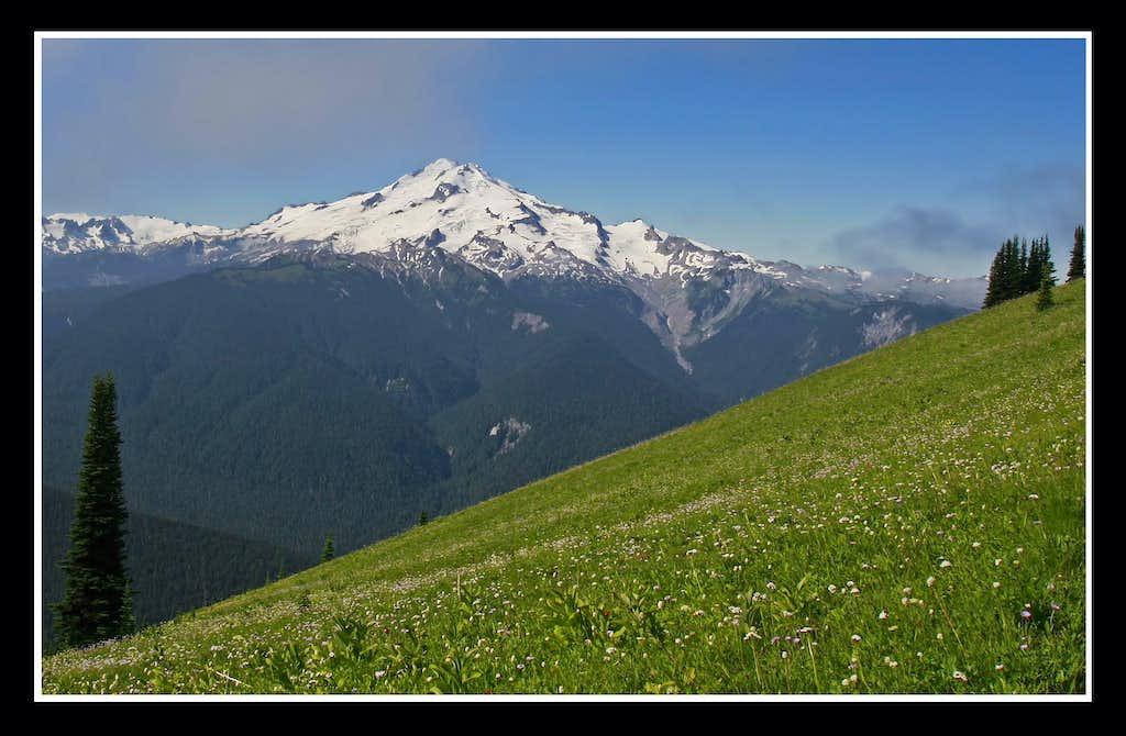 Glacier Peak and Meadow