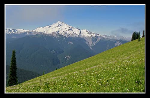 Glacier Peak and Meadow