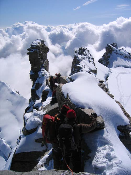 Descending the summit ridge of Gran Paradiso