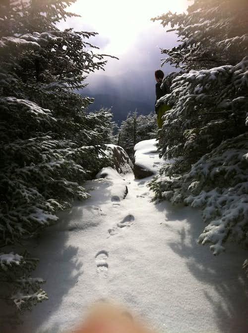 Summit of Mt Hancock via loop trail  NH 11-21-10 4319 feet