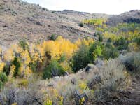 Fifth Fork of Rock Creek, Idaho