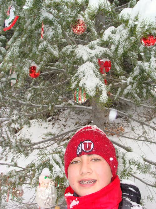 Lee boy & the Malan's Christmas Tree