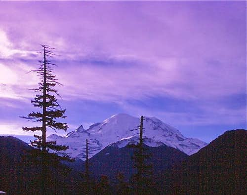 Mt. Rainier morning