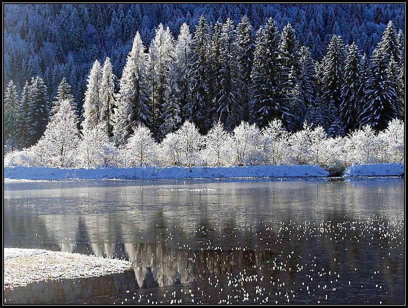 Winter near Ratece