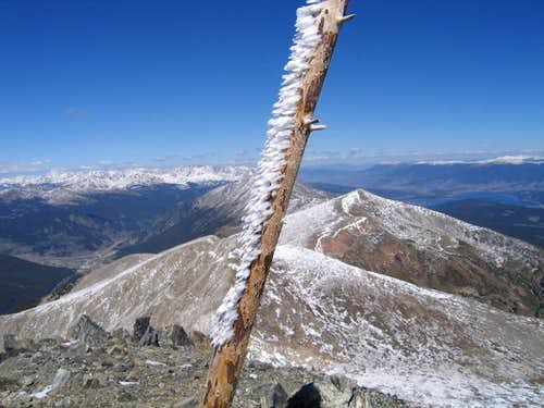 Tree branch on Peak 10...