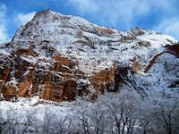 Snow in Zion