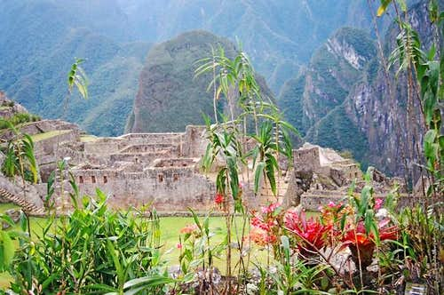 Flowers, ruins and mountains....