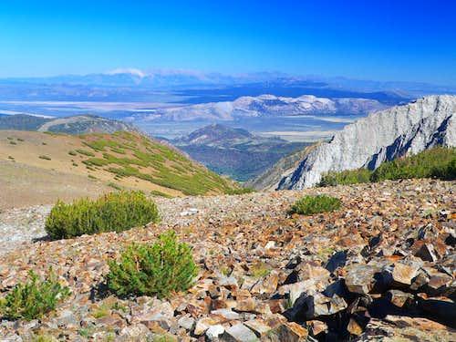Mono Basin from Tioga Peak