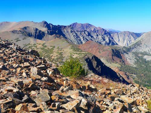 North from Tioga Peak