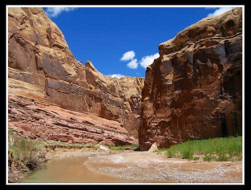 Muddy River Gorge