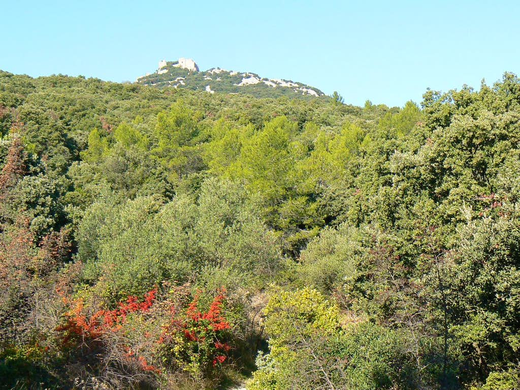 Hike to the Pic Saint-Loup and its castle