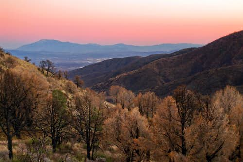 San Jacinto from Circle Mountain
