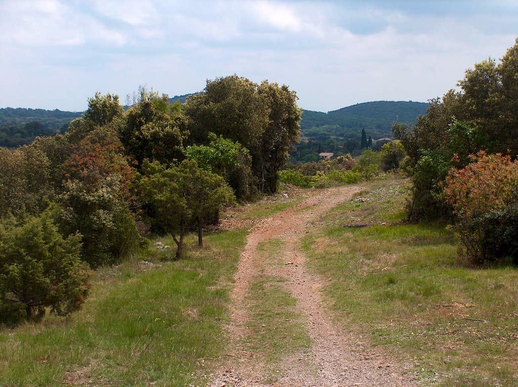 Trail to Pic Saint-Loup