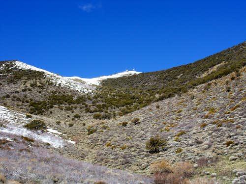 Looking up at the summit of Peavine Peak
