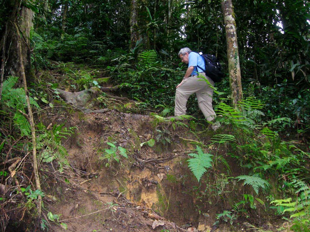 Climbing Gunung Beremban