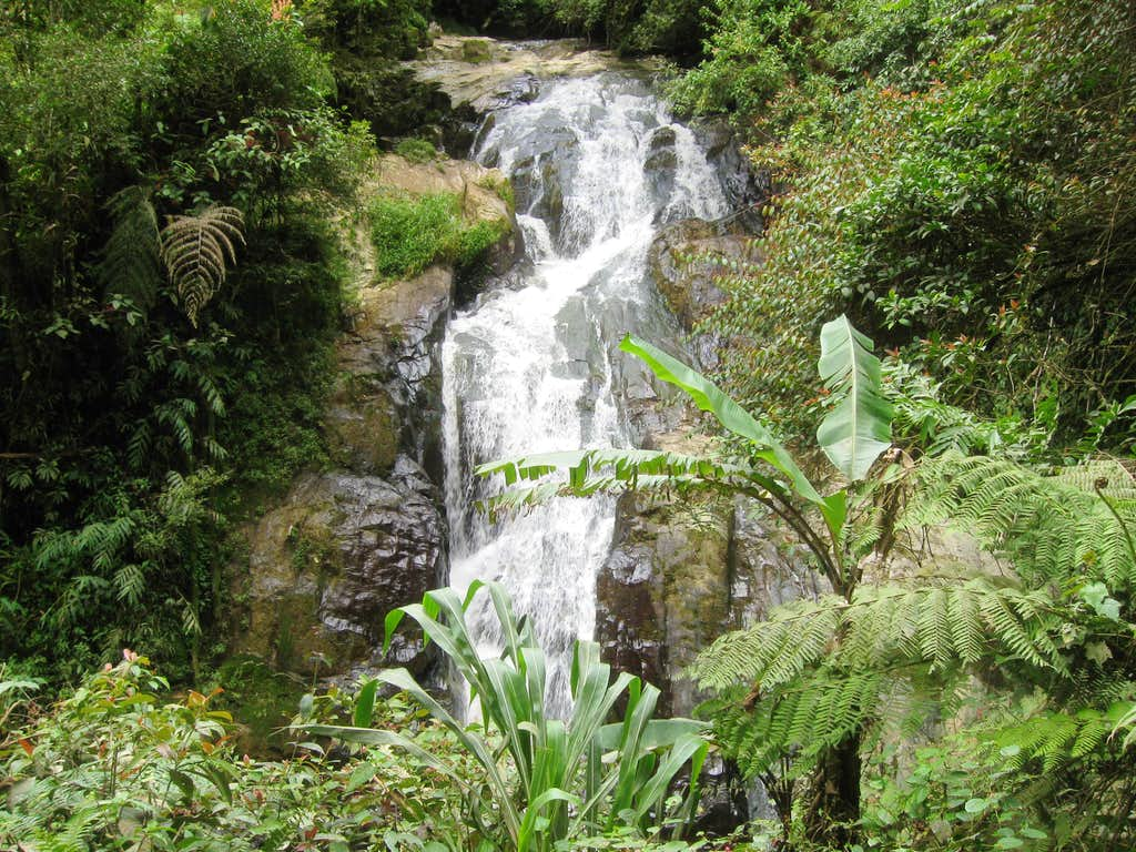 Robinson Waterfall