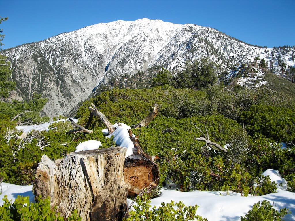 Mount Baldy