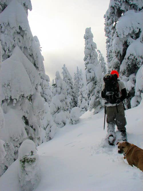 Snow Travel on Arrowhead