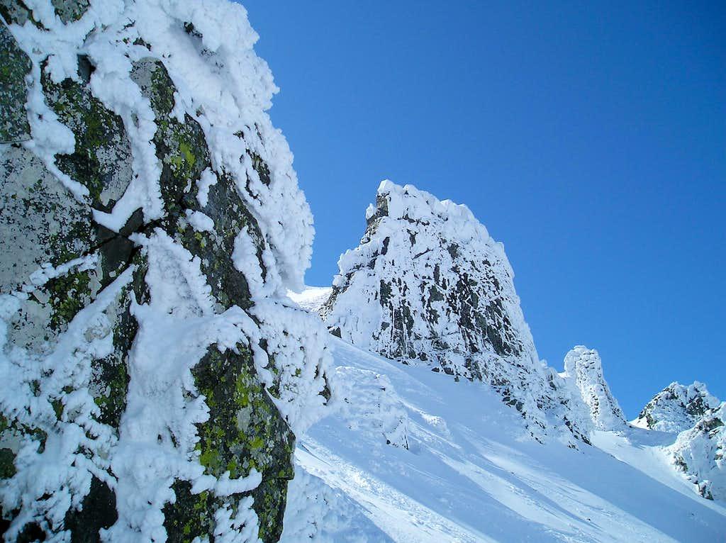 Val d'Enfer. Sancy. Auvergne