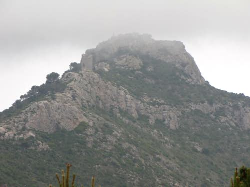 Desierto de las palmas castell Montornes