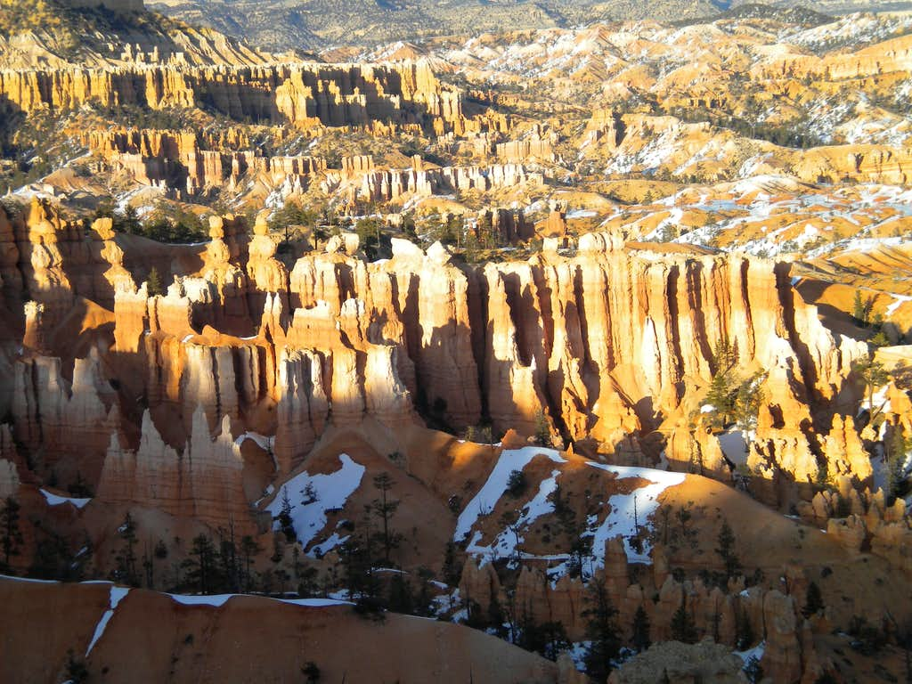 Bryce NP Sunset Point detail