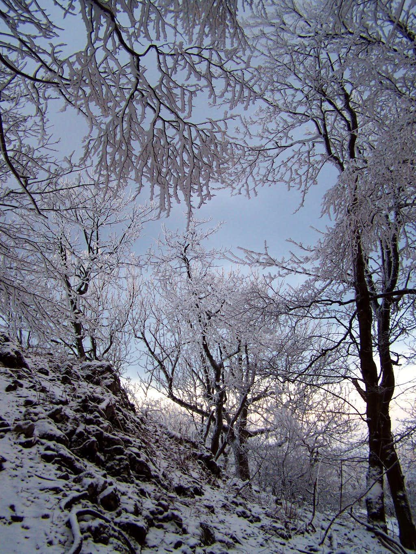 Near the peak of Záruby / Burián-hegy