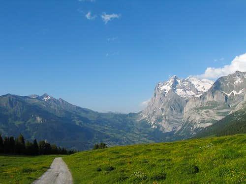 Schwarzhorn (highest point on...