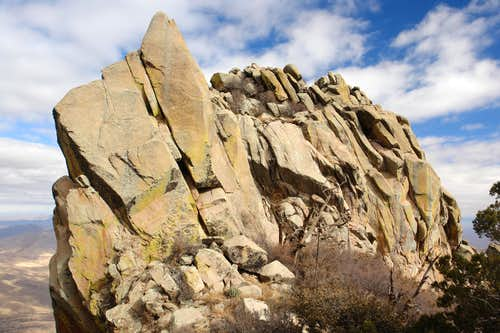 East Summit of Organ Needle