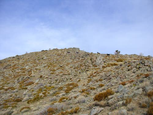 Final stretch to the summit - the horses walking away
