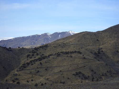 Petersen Mountain Highpoint seen from Freds Mountain Road