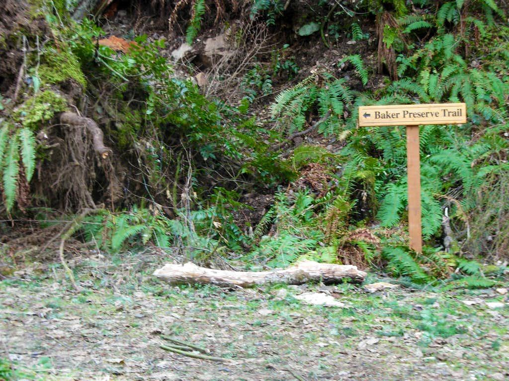 Baker Preserve Trail