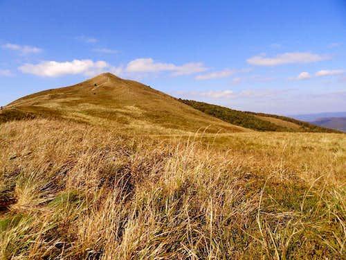 Summit of Mount Połonina Caryńska (1234 m)