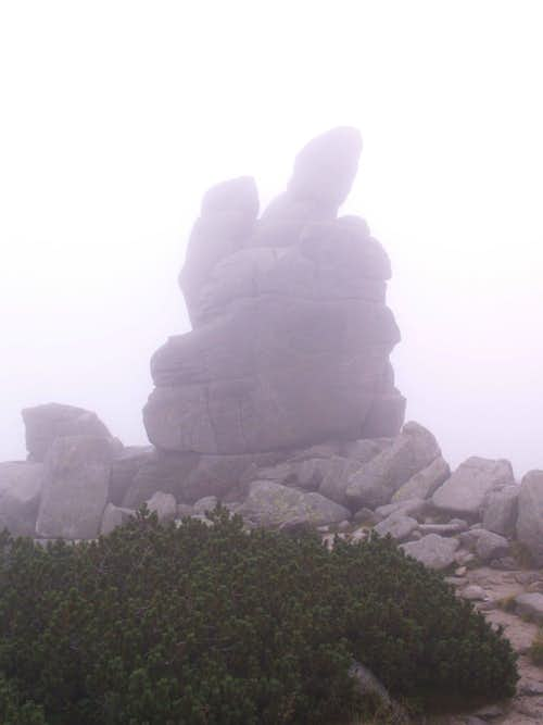 Foggy rocks...