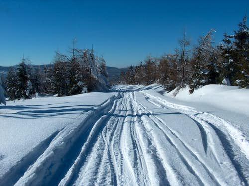 Trail under Stóg Izerski